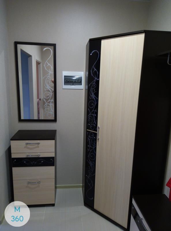 Однодверный распашной шкаф Нашвилл Арт 003195507