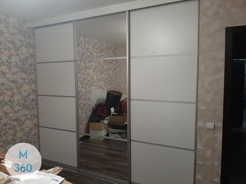 Комбинированный шкаф купе Антуриум Арт 003696713